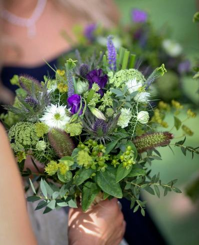 rich aubergine and feather wedding bedford